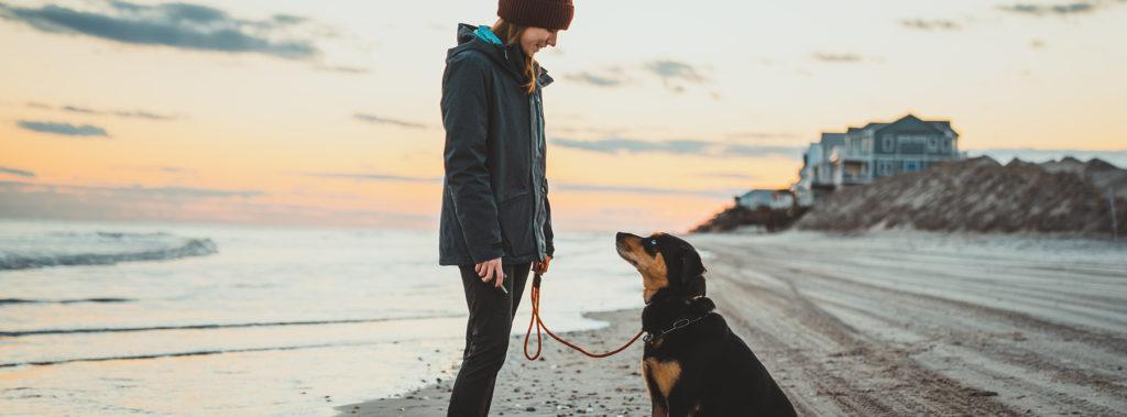 Sneads ferry nc dog training