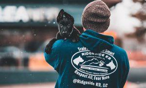 Puppy training by Ridgeside K9 in Jacksonville, NC